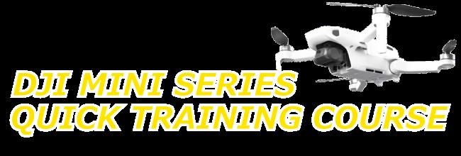 Mini-Series-quicktrainingcourse-course-title