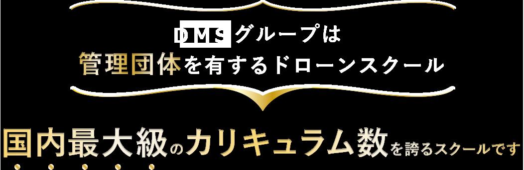 main-title-DMS-1